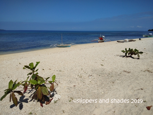 the long stretch of creamy white sand is embraced by serenity and peaceful ambiance