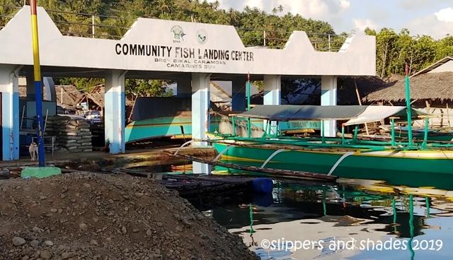at Bikal Port