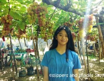 Grapes Model No. 2. Haha!